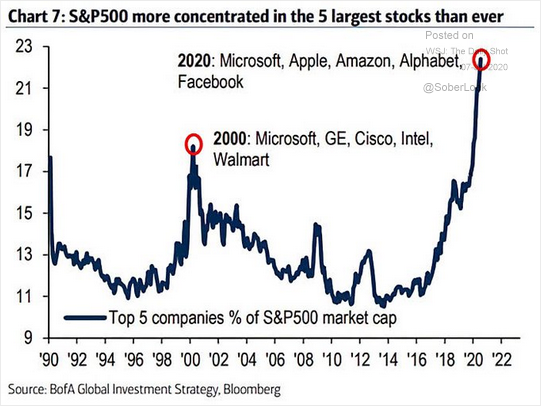 Chart of the most concentrated stocks in the S&P 500.